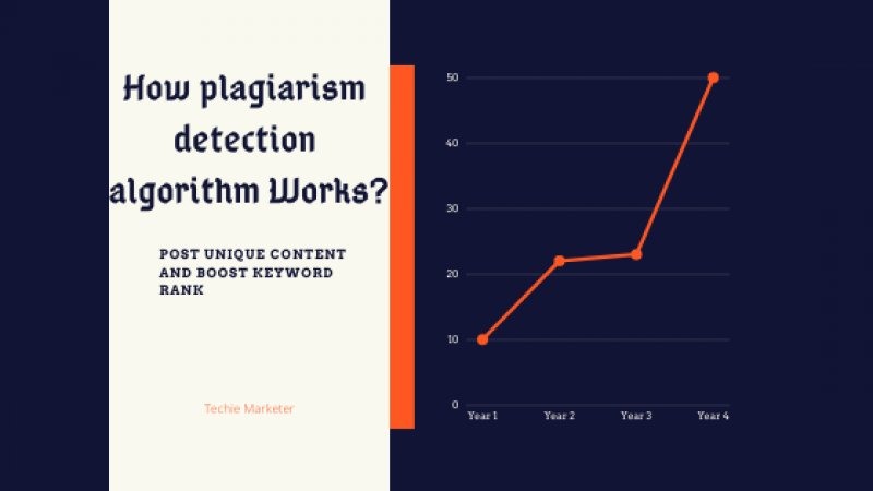 Plagiarism Detection Algorithm