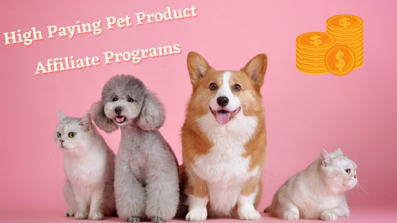 Pet Product Affiliate Programs - 6 Best and High Paying Platform to Try